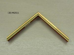 (ミ)2511 (1)